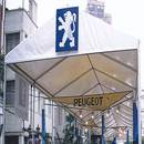 Party Tent (China)