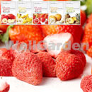 Freeze-Dried Strawberry (Korea, Republic Of)