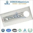 Aluminum Extrusion Panel (China)