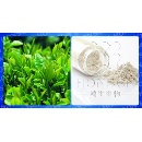 Egcg Green Tea Extract (China)