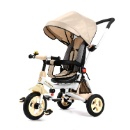 Luxury Tricycle With Pads (China)