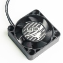 Signal 10 Master Competition Cooling Fan (Hong Kong)