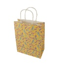 Paper Handle Shopping Bag (Mainland China)
