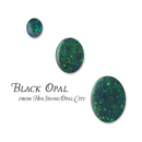 Black Opal (Hong Kong)
