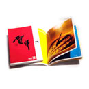 Printed Brochure (China)