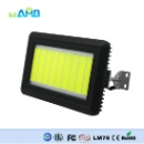 Unique LED Flood Light (China)