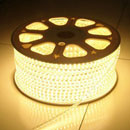 LED Strip Light (China)